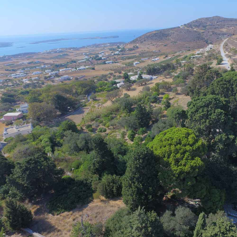 The Butterfly Valley in Paros